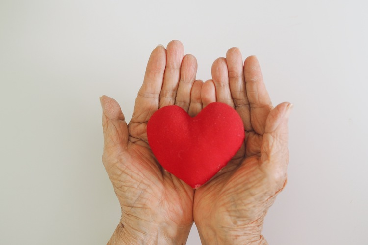 Hold stuffed heart in hands